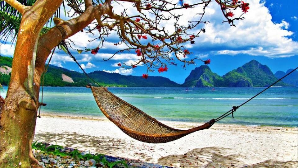 Someday Travel Agency 718 845 7615